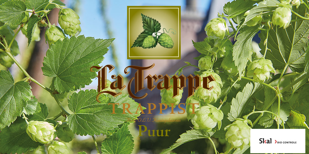 la-trappe-puur-pure-and-honest-beer